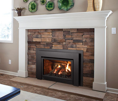 Regency Energy U31 Medium Gas Insert - Fireplace