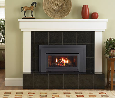 Regency Energy E21 Small Gas Insert - Fireplace