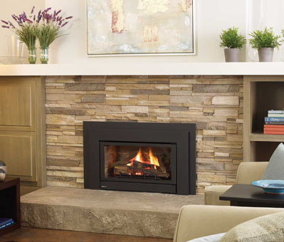 Regency Energy U32 Medium Gas Insert - Fireplace