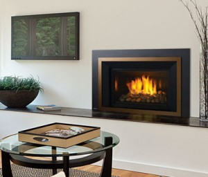 Regency Horizon HRI6E Large Gas Insert