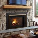 Regency Liberty ® LRI6E Large Gas Insert - Fireplace