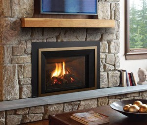 Regency Liberty LRI6E Large Gas Insert
