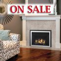 Regency® Horizon® HRI3E Gas Insert - Fireplace